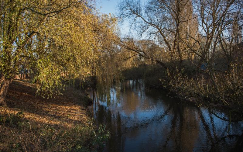 river-dane-1